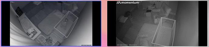 Screen Shot 2021-07-29 at 1.40.37 PM